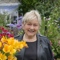 An Interview with Helen Dillon