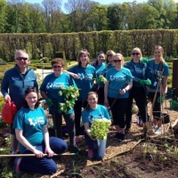 Cancer Focus NI – Ribbon Garden